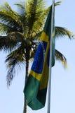 Brasilianische Markierungsfahne und eine Palme Stockfoto