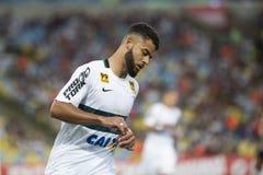 Brasilianische Meisterschaft stockfotos