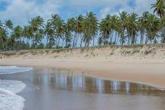 Brasilianische Strände-Pontal tun Coruripe, Alagoas Stockfotografie