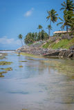 Brasilianische Strände-Pontal tun Coruripe, Alagoas Stockbilder