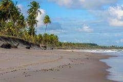 Brasilianische Strände-Pontal tun Coruripe, Alagoas Lizenzfreie Stockfotos