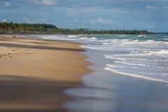Brasilianische Strände-Pontal tun Coruripe, Alagoas Lizenzfreies Stockfoto