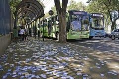 Brasilianische Wahlen 2012 - schmutzige Stadt Stockfoto
