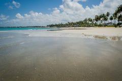 Brasilianischer Strand-Strand von Carneiros, Pernambuco Stockfotos