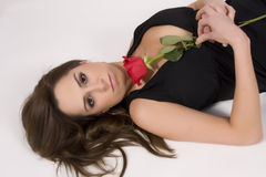 Brasilianisches Baumuster mit einer Rose lizenzfreie stockbilder