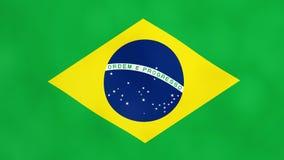 Brasilianisches Flaggen-Land des Brasilien-Übergangs-Grün-Schirmes stock footage