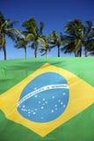 Brasilianisches Flaggendetail mit Palmen Stockfotos