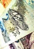 Brasilianisches Geld Stockfotos