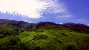 Brasilianisches Meer von Hügeln lizenzfreies stockfoto