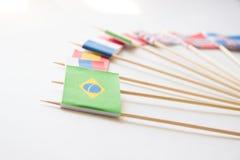 Brasilianpappersflagga bland andra landsflaggor på vit Fotografering för Bildbyråer