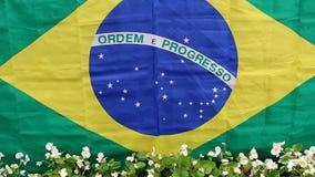 Brasiliansk flagga och blommor stock video
