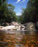 brasiliansk flod Royaltyfri Fotografi
