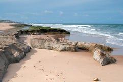brasiliansk kustlinje Royaltyfri Bild