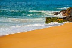 Brasiliansk strand med gul sand och bl?tt hav i soligt v?der _ Salvador h?rligt dimensionellt diagram illustration s?dra tre f?r  arkivfoton