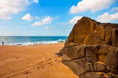 Brasiliansk strand med gul sand och bl?tt hav i soligt v?der _ Salvador h?rligt dimensionellt diagram illustration s?dra tre f?r  royaltyfri fotografi