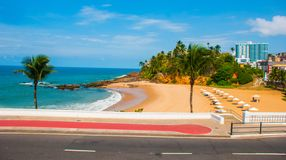 Brasiliansk strand med gul sand och bl?tt hav i soligt v?der _ Salvador h?rligt dimensionellt diagram illustration s?dra tre f?r  royaltyfria bilder