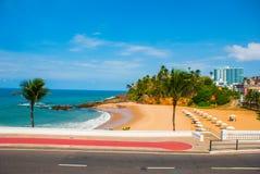Brasiliansk strand med gul sand och bl?tt hav i soligt v?der _ Salvador h?rligt dimensionellt diagram illustration s?dra tre f?r  royaltyfria foton