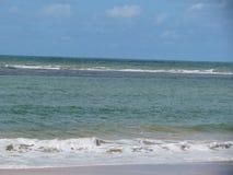 Brasiliansk strandsand, våg och hav arkivbild