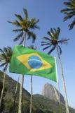 Brasilianska flaggaSugarloaf palmträd Rio Brazil Arkivbild