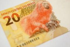 Brasilianska pengar Royaltyfri Bild