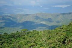 Brasilien berg och skog Fotografering för Bildbyråer