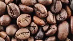 Brasilien Bio kaffe arkivfilmer