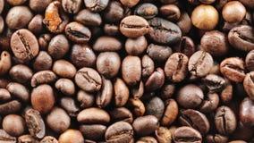 Brasilien Bio kaffe lager videofilmer