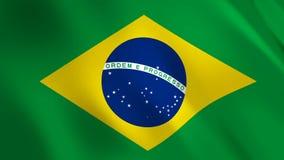 Brasilien fahnenschwenkend