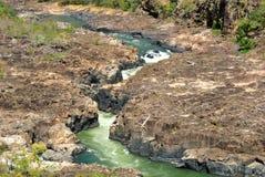 Brasilien flod Fotografering för Bildbyråer