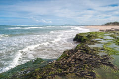 Brasilien-Küste Lizenzfreies Stockbild