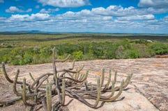 Brasilien-Landschaft Lizenzfreie Stockbilder