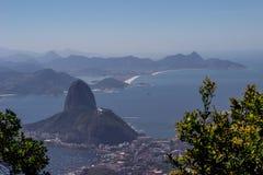 Brasilien möter havet Arkivfoto