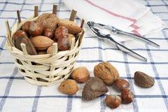 Brasilien mutter, valnötter, mandlar och hasselnötter Royaltyfri Foto