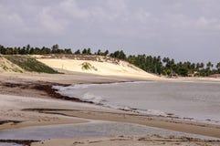 Brasilien, Pititinga, Sanddüne Lizenzfreies Stockbild