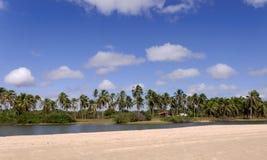Brasilien, Pititinga, Strand mit Palmen Lizenzfreies Stockbild