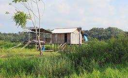 Brasilien Santarém: Bo i rainforesten - som är hem- på styltor royaltyfria bilder