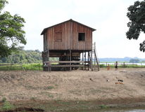 Brasilien Santarém: Bo på Amazonet River - strand hem royaltyfri fotografi