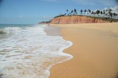Brasilien strand Fotografering för Bildbyråer