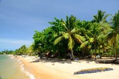 Brasilien strand Arkivbild