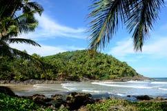Brasilien strand Itacare Arkivfoton