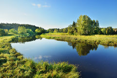 Brasla rzeka w Gauja Zdjęcia Royalty Free