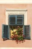 brasov цветет окно Румынии Стоковое фото RF