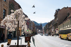 Brasov city street Royalty Free Stock Photography