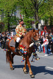 brasov juni parada Romania Obraz Royalty Free