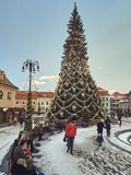 Tall Christmas tree in the Council Square, Brasov, Romania royalty free stock photo