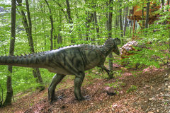 BRASOV, ROMANIA - JUNE 2015: Real-sized dinosaurs at Rasnov Dino Royalty Free Stock Images