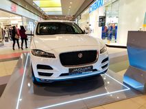 Jaguar F Pace in the local mall close up shot. stock photo