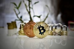 Free Brass And Gold Bitcoin Coins Stock Photography - 93111612