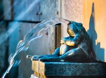 Brass Bull Frog Statue Water Feature. In the early evening sits a bullfrog that has been cast in brass and set inside a water feature with lights casting a stock photos