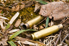Brass Cartridge Stock Photography